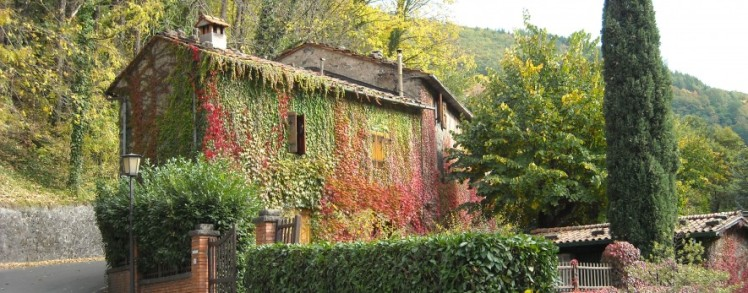 cropped-italy-cottage2.jpg