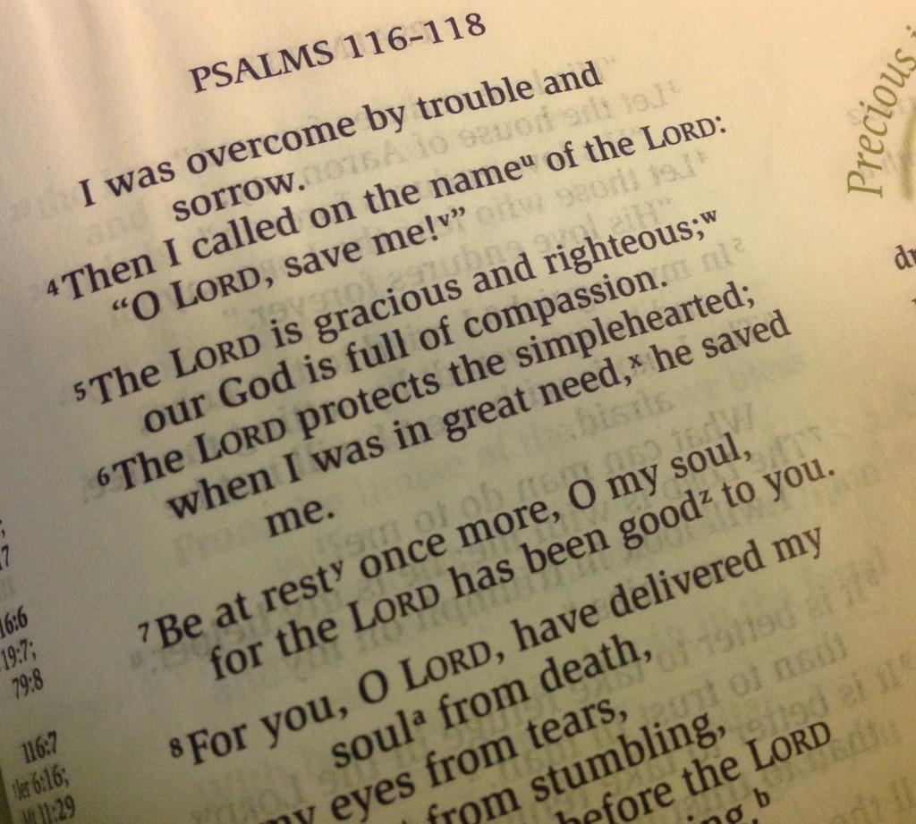 blog scripture psalm