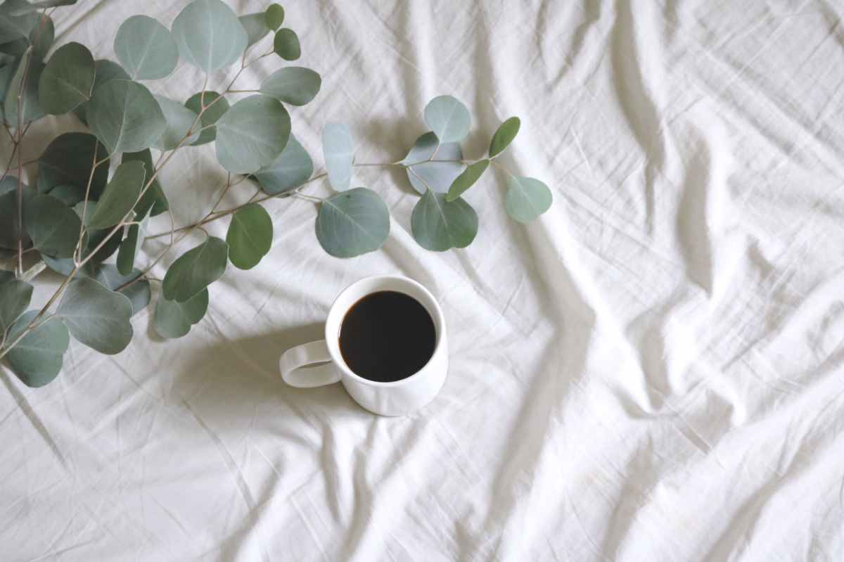 photo of white ceramic mug with coffee next to silver dollar gum tree leaves on white bed sheet
